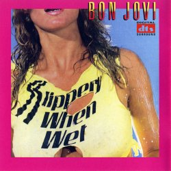 Bon Jovi - Slippery When Wet (2005) DTS 5.1