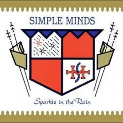 Simple Minds - Sparkle In The Rain (2015) DVD-Audio